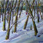 Snow in Woods